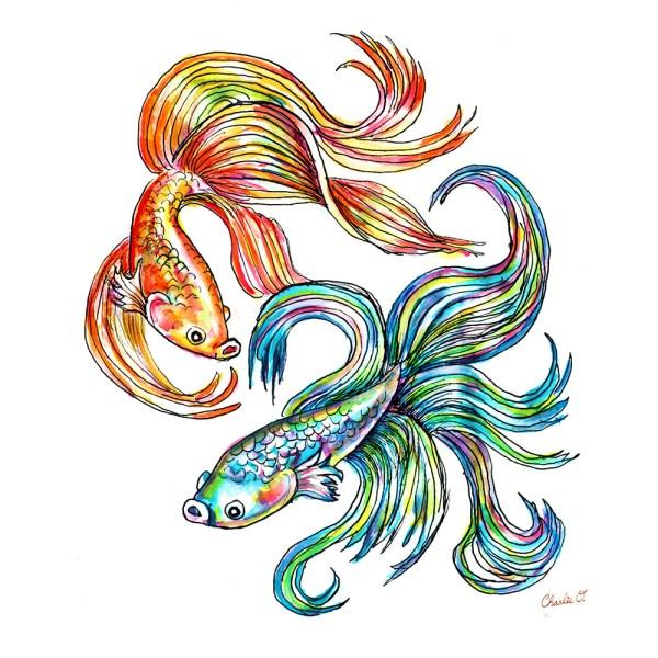 Siamese Fighting Fish Watercolor Print Detail