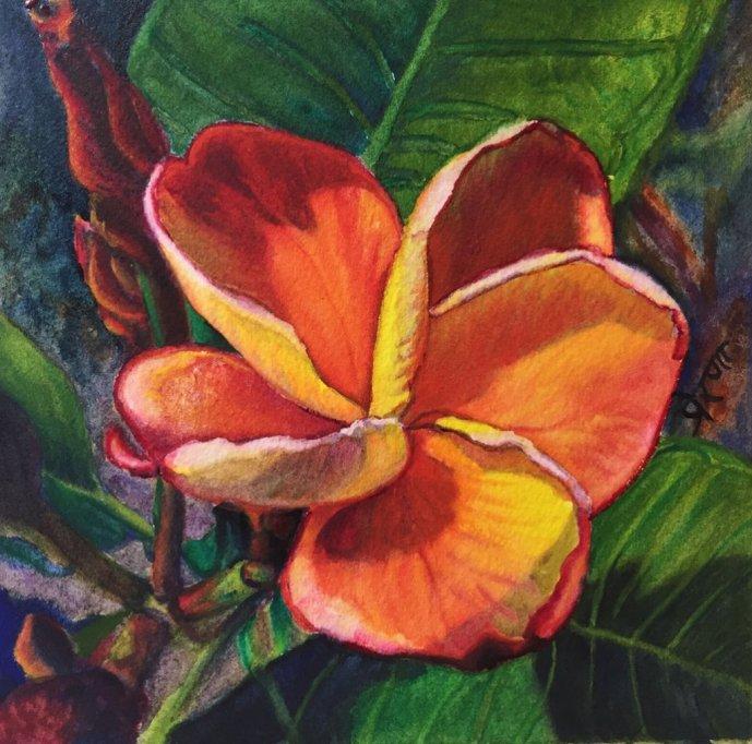 Plumeria Watercolor Painting by Prerana Kulkarni - Doodlewash
