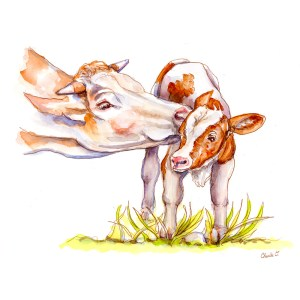 Cow and Calf Watercolor Print Detail