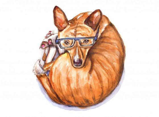 Day 11 - Phineas Basenji Watercolor Glasses - Doodlewash