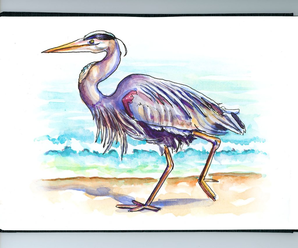 Heron Beach Watercolor Illustration - Doodlewash