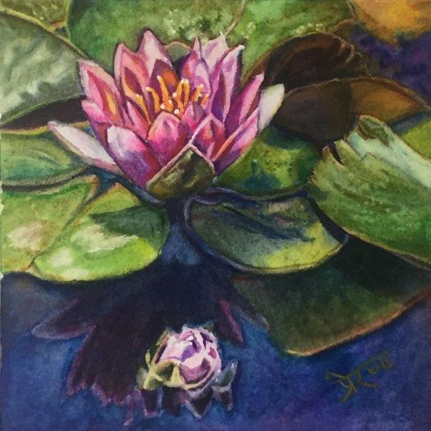Water Lily Watercolor Painting by Prerana Kulkarni - Doodlewash