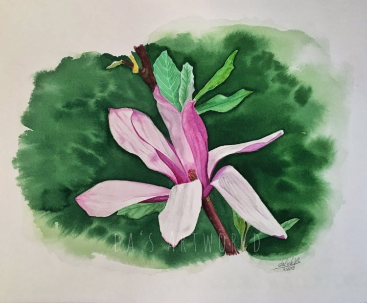 Magnolia flower – watercolor on Saunders Waterford cold press paper 18x25cm – My thought