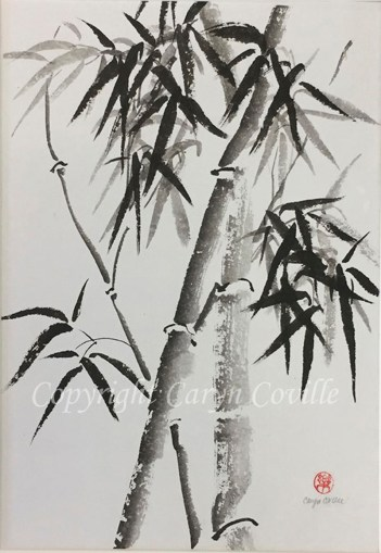 Bamboo Ink - C. Coville - Doodlewash