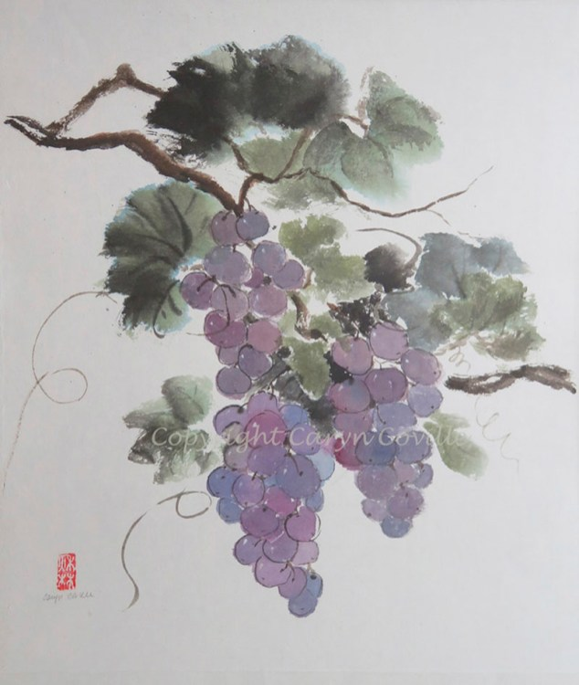 On the Vine, Ink & Watercolor - C. Coville - Doodlewash