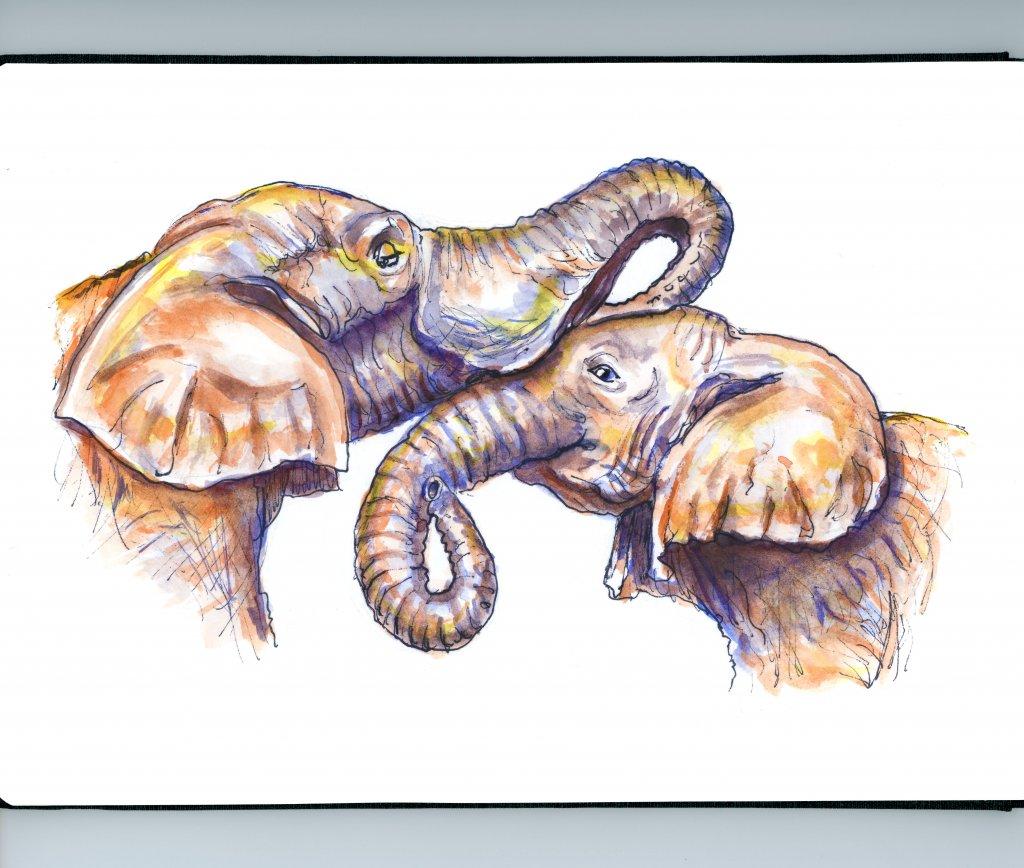 Elephant Mother Child Illustration Watercolor - Doodlewash
