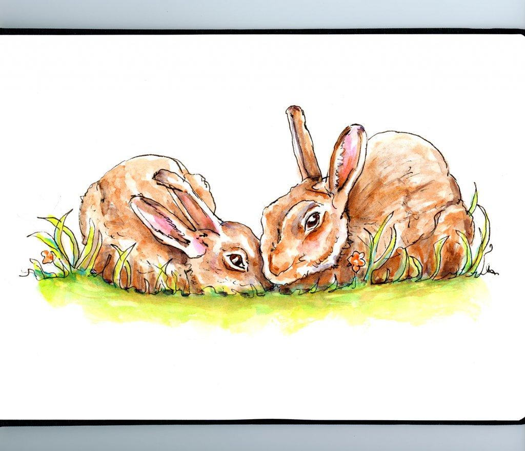 Bunny Easter Illustration - Doodlewash