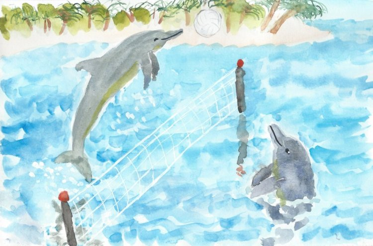 Dolphin Games Dolphin Game