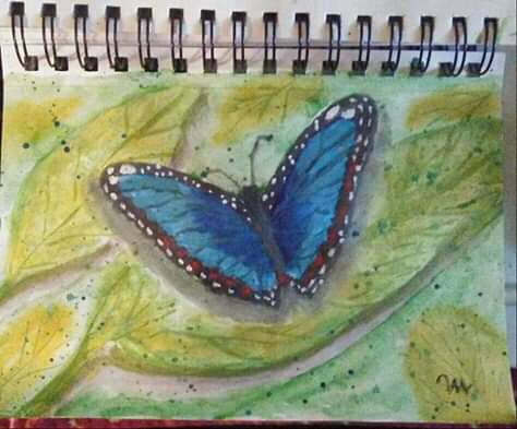 I have a love for butterflies went to the butterfly House so was inclined to do this blue one FB_IMG