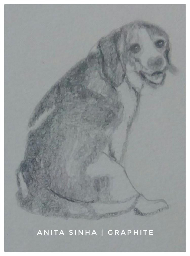 Day 11 – Pets – Pet dog. #doodlewashApril2019 #WorldWatercolorGroup #anitasinhaastrologe