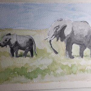 Elephants! IMG_20190416_131830_566