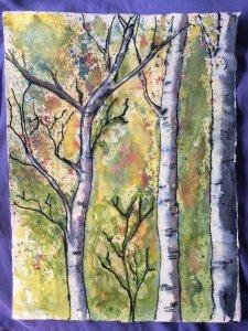 Birch tree study. IMG_4463