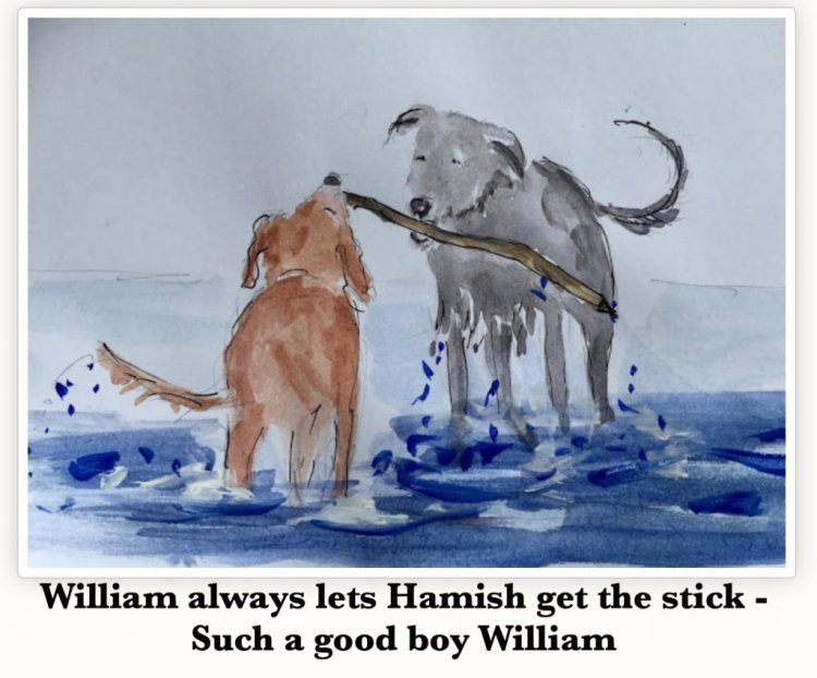 Hamish is the cocker spaniel who adores William….the feeling is mutual though, they are best o