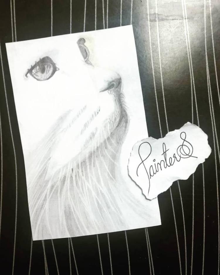 #PainterS #nonstopcreative March : 27 Topic : Childhood Pet . #doodlewash #doodlewashed #doodlewashm