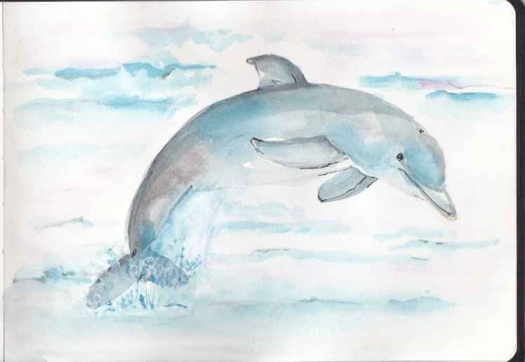 Day 14 Prompt-Dolphins dolphin_0002