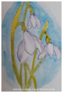 Day 25 – May colour challenge : Snow white. The snow drop flowers. #doodlewashMay2019 #WorldWa
