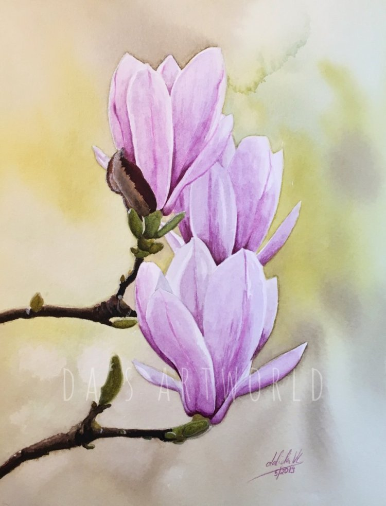 I guess I can't stop painting Magnolias  Watercolor on Saunders Waterford cold press