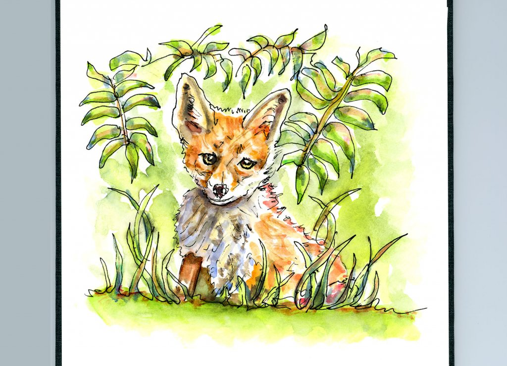 Day 6 - Fox In The Grass Watercolor Illustration - Doodlewash
