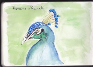 Prompt Day 8- Proud as a Peacock Proud as a Peacock_0001