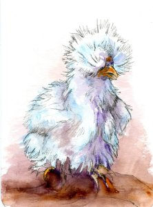 Prompt Snow White. Silky Chicken-Zebra Zensations Technical Pen & Watercolor on Hahnemühle CP W