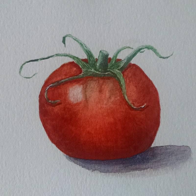 Tomato a8814b3d-658c-41a0-a153-56932b373951-compressed