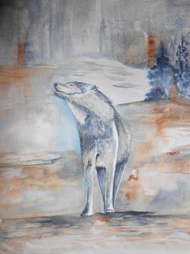 en mai pour moi sa sera le loup aquarelle 005