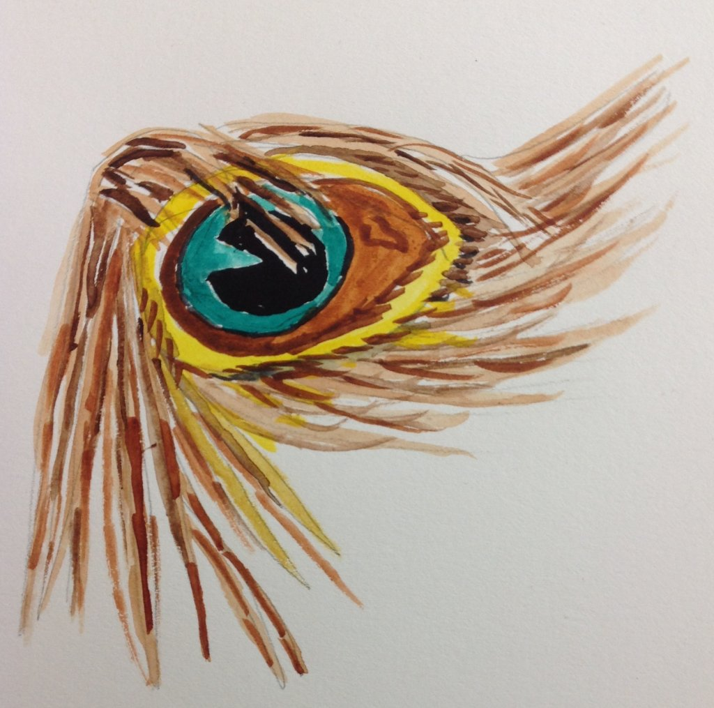 Day 8 #doodlewashMay2019 Proud as a Peacock day 8 proud as a peacock
