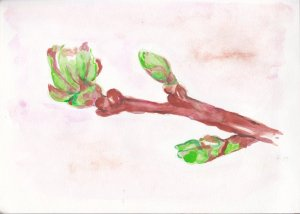 Day 6 Prompt-Green as Grass-A green tree bud worked for me as they are finally everywhere after a lo