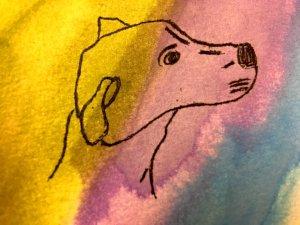 Tali, my pup. 4D6F6B08-57B1-48FB-BDD6-EBB03E3EC691