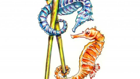 Two Seahorses Watercolor Illustration