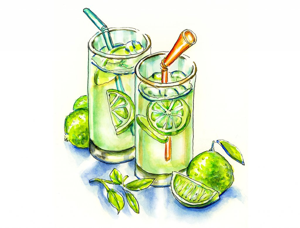 Limeade Limes Watercolor Illustration