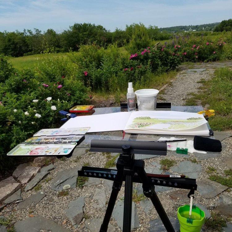 This is my plein air setup. IMG_20180617_100449_311