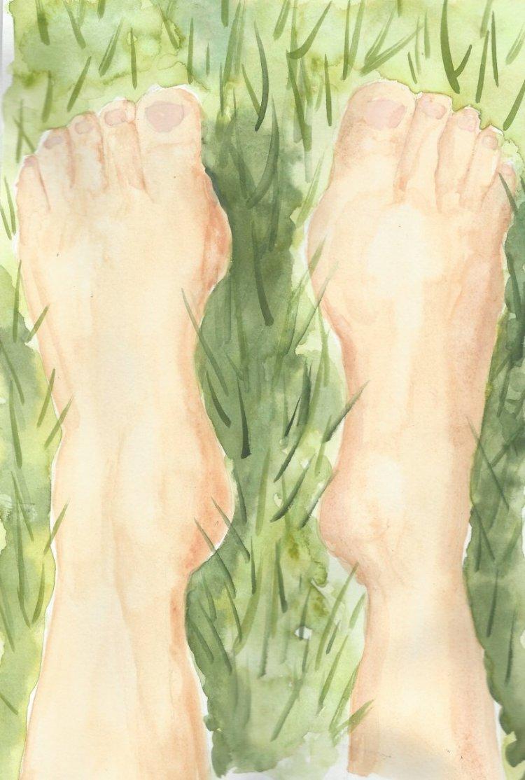 Bare feet on green grass My Feet