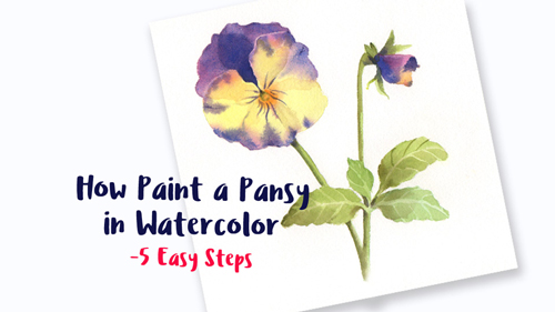 how to paint a pansy in watercolor promo