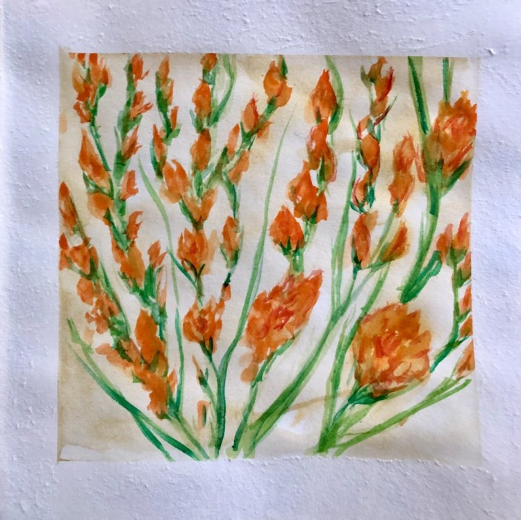 #WorldWatercolorMonth Day 12: Blossoming B0695A12-9719-432E-95AD-2E332742E4A4