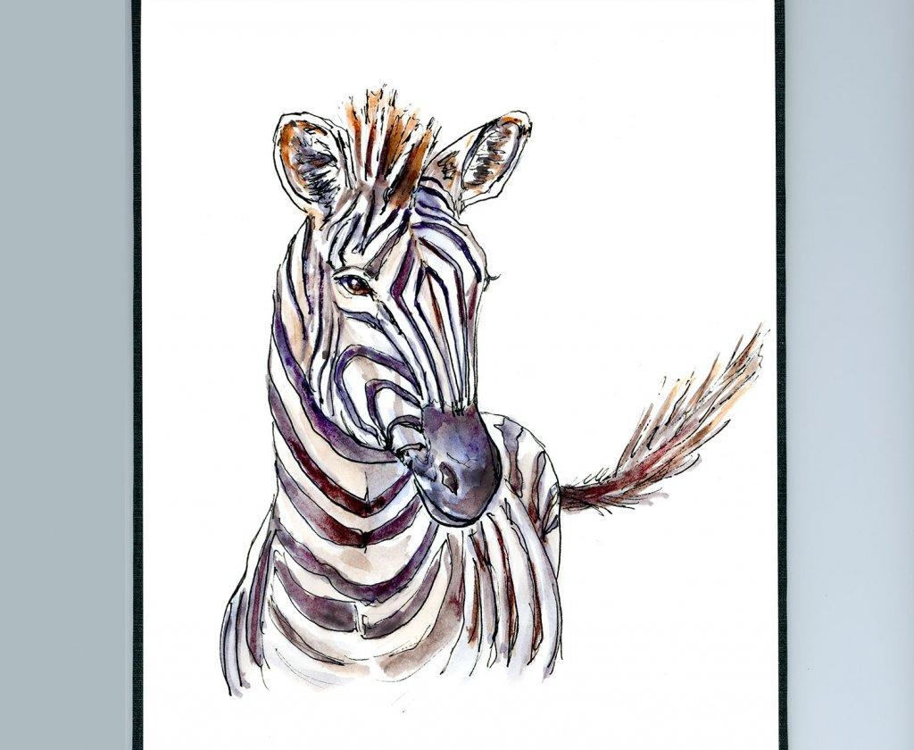 Zebra Watercolor Illustration Sketchbook Detail