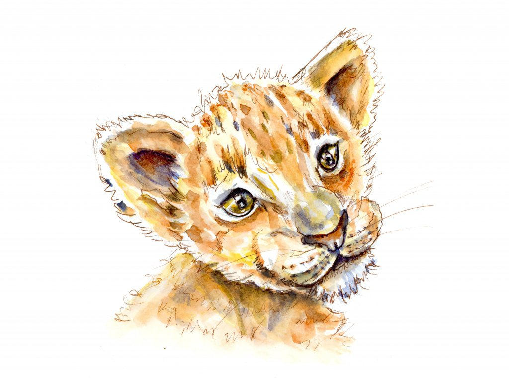 Lion King Cub Baby Watercolor Illustration