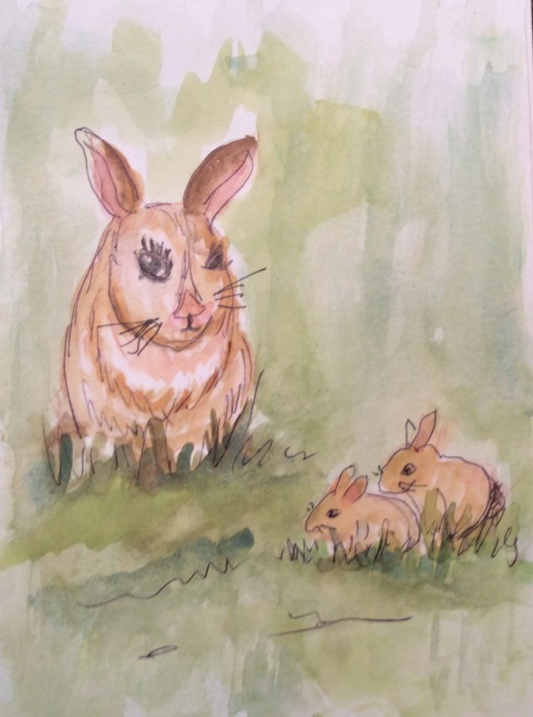 """#worldwatercolormonth day 14 Furry things; Mama rabbit keeps an eye on her \""""kids\"""". IMG"""