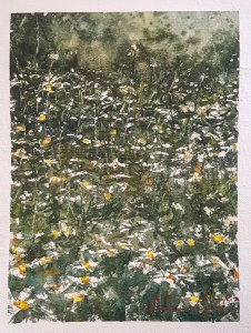 ..On A field of Daisies 🌼 Some blooming wildflowers on my paper Small rapid abstract sketch