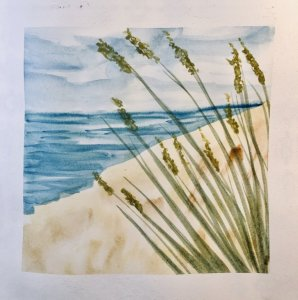 #doodlewashAugust2019 #TravelFun #WorldWatercolorGroup Day 21: Grass My favorite grasses are the sea