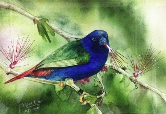 Bird Watercolor Painting by Jerson Antao