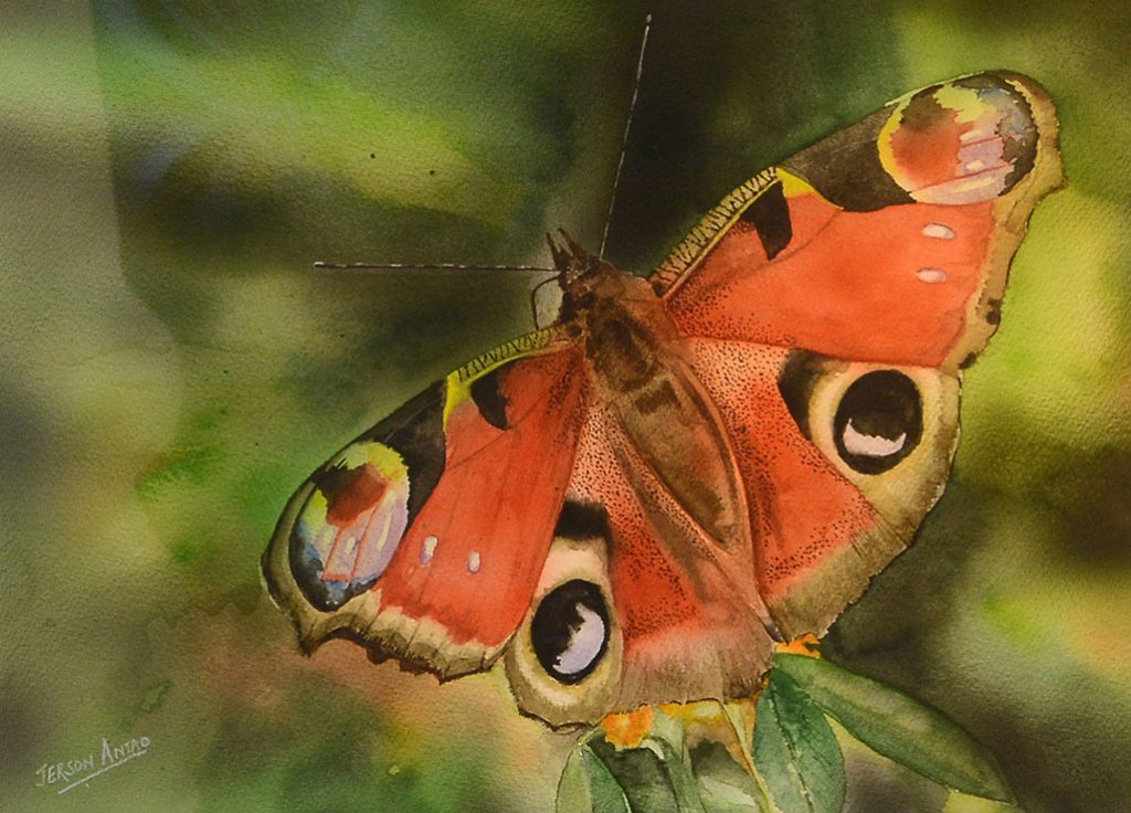Butterfly Watercolor Painting Jerson Antao