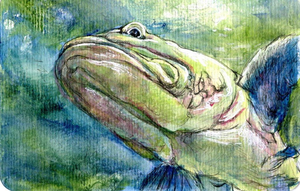 Underside of Ugly – Prompt: Fish. Zebra Zensations Technical Pen & Miya Watercolor on Hahn