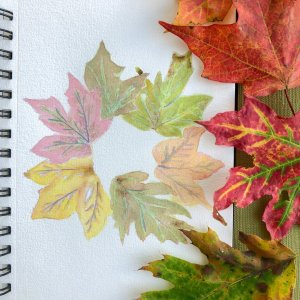 """Prompt: Leaves Autumn is a second spring when every leaf is a flower."""" ~ Albert Camus Found these"""