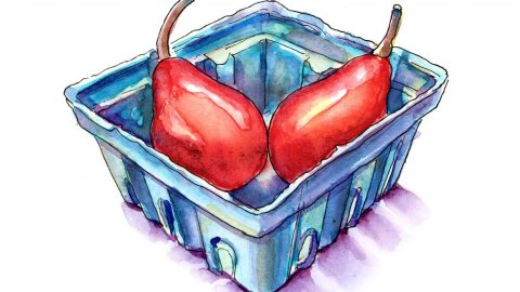 Red Starkrimson Pears Watercolor Illustration