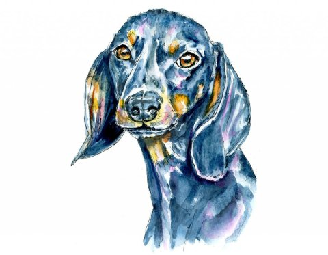 Dog Pet Portait Black Watercolor Illustration