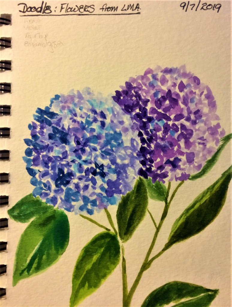 Hydrangeas from an LMA Tutorial for this month. I got to doodle it before doing it LOL 😀 IMG_4801