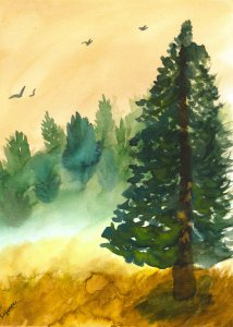 Misty Forest Landscape Misty Forest Watercolor Cropped