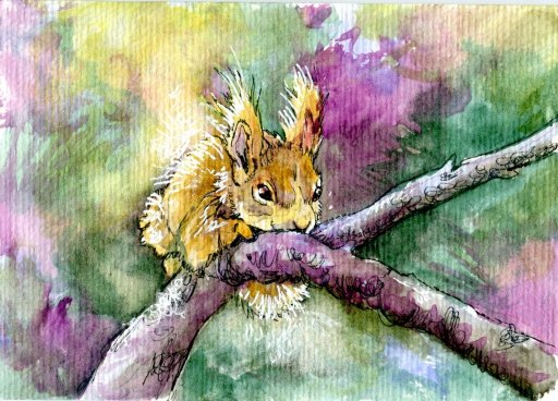 Wild Squirrel for Inktober. This turned into a 3-way. I used it for my Inktober offering, a Postcard