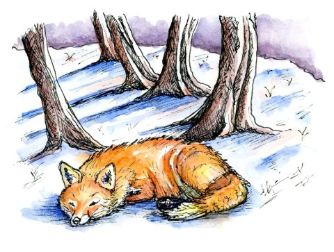 Fox Snow Scene Watercolor Illustration